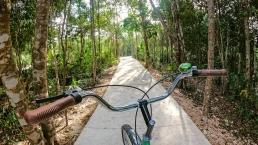 Bici De Senderos Areas Verdes En Ciudad Mayakoba