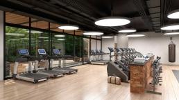 Gym Intalaciones Interior En Alto De Mayakoba