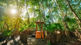 Parques En Senderos De Ciudad Mayakoba Areas Verdes